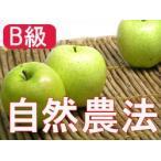 りんご 林檎 リンゴ (B級品)竹嶋有機農園の自然農法りんご 王林 5kg ※青森県産