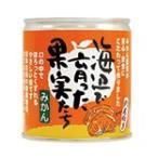 海辺で育った果実たち(みかん缶詰) ※24缶セット