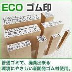 漢字・ひらがな・ローマ字OK! ECO ゴム印(オリジナル) 印面サイズ:10×35mm