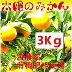 太陽のみかん2.5K  和歌山産 送料無料
