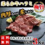 ハラミ 3kg 送料無料 牛ハラミ やわらかハラミ 牛肉 肉 焼き肉 bbq バーベキュー グルメ
