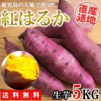さつまいも  紅はるか 5kg 送料無料 生芋 土付き さつま芋 薩摩芋 焼きいも 焼き芋 石焼き芋 芋 いも イモ 産地直送 産直 鹿児島県産