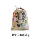 令和元年産 新米 福岡県産 夢つくし 玄米 5kg 農家直送 送料無料