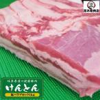 岐阜県産 けんとん豚バラかたまり 2kg(1kgずつ真空) 焼肉 炒め用 焼豚 煮豚 角煮