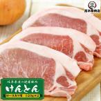 岐阜県産 けんとん豚ロースステーキ 120g 1枚 トンテキ 豚カツ 焼肉 ギフトにも