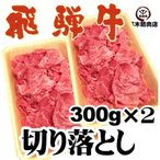 飛騨牛 切り落とし 300g×2p 計600g 焼しゃぶ すき焼き 牛丼 肉じゃが 冷凍