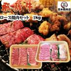 父の日 飛騨牛ロース入焼肉セット 1kg バーベキュー 牛肉 豚肉 鶏肉 牛ホルモン