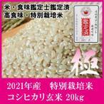 【新米】玄米30kg 滋賀県産コシヒカリ 食味鑑定士・お米マイスター鑑定済の高食味・特別栽培米