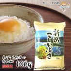 新潟県産こしいぶき(令和2年産)10kg 【送料無料(一部地域を除)】