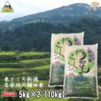 《新米》新潟県産コシヒカリ(棚田米)10kg (5kg×2袋)(令和2年産)【送料無料(一部地域を除)】