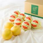 ご自宅用 おすすめ お取り寄せ 新宿高野 Day Fruit デイフルーツ グレープフルーツ #29100