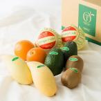 ギフト 内祝い お返し 手土産 結婚祝い 出産祝い 新宿高野 Day Fruit デイフルーツセットA #29100