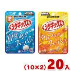 (2つ選んでクリックポスト全国送料無料)味覚糖 シゲキックス(10×2)20入