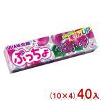 (本州一部送料無料) 味覚糖 ぷっちょスティック ぶどう (10×4)40入 (Y60)