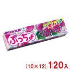 (本州一部送料無料) 味覚糖 ぷっちょスティック ぶどう (10×12)120入 (Y80)