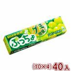 (本州一部送料無料) 味覚糖 ぷっちょスティック シャインマスカット (10×4)40入 (Y60)