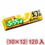 (本州一部送料無料) 味覚糖 ぷっちょスティック 幻のみかん (10×12)120入 (Y80)(ケース販売)