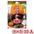 (本州一部送料無料)味覚糖 Sozaiのまんま コロッケのまんま デミグラスソース味 (6×5)30入 (Y10)