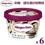 (本州一部冷凍送料無料) ハーゲンダッツ ミニカップクッキー&クリーム 6入 (冷凍)