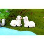 羊 坐る ひつじ テラリウムフィギュア 動物 フィギュア ミニチュア ミニフィギュア コケリウム テラリウムキット