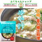宮崎 冷や汁の素 100g 2人から3人用 ×2袋 郷土料理 送料無料