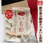 食べ切りサイズからいも飴(冨士屋あめ本舗)80g【送料無料】
