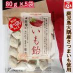 食べ切りサイズからいも飴(冨士屋あめ本舗)80g×5袋【送料無料】
