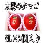 宮崎・完熟マンゴー 2L(約250g×1個)国内最高ランクの美味しさ 送料無料