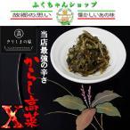 【オニマル】最強の辛さからし高菜エックス120g×1袋(送料無料)