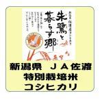 新米 新潟県産 JA佐渡 特別栽培米 コシヒカリ 平成29年産 白米 5kg 送料無料(本州のみ)