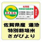 新米 佐賀県産 あうち 特別栽培米 さがびより   平成29年産 白米 5kg 送料無料(本州のみ)