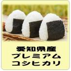 新米 愛知県産 コシヒカリ 平成29年産    白米 5kg 送料無料(本州のみ)