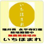 栽培期間中無農薬米 福井県永平寺町産いちほまれ 令和元年産 白米5kg 送料無料(本州のみ)
