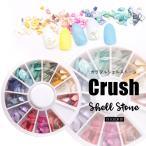 【シェル】クラッシュシェル シェルストーン 円型ダイヤルケース12色セット 天然貝【メール便対応】貝の欠片 お得なセット
