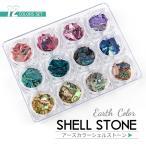 ショッピングシェル アースカラー シェルストーン 角型ケース入り12色セット 天然貝【メール便対応】貝の欠片 お得なセット