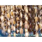 吉品 岩手県 乾鮑魚(干しあわび)1粒 約15g【干しアワビ】日本製国産干鮑魚