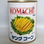 玉米筍 m 21〜25本 540g/ 1缶 ヤングコーン水煮 缶詰