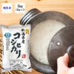 美味しい無洗米 新潟県産コシヒカリ(5kg)無洗米(令和2年産)産地直送 新潟米 おにぎり もちもち 贈り物