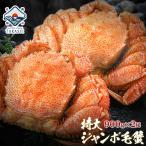 ジャンボ毛蟹 1尾800g 超特大 最高ランクの堅かに 毛ガニ 毛蟹 毛がに かに みそ ギフト 贈答