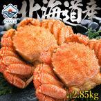 身入り90%以上の3特4特の最高ランクの堅蟹!