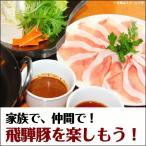2017年福袋 3000円B 送料無料 飛騨豚しゃぶしゃぶセット梅B  この美味しさ、1度食べていただきたい!岐阜県・ふるさと名物商品