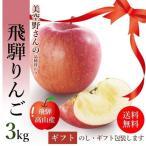 サンふじ りんご 3kg 箱 8〜10玉 秀品 贈答用 送料無料 美空野 飛騨 高山 果物 フルーツ 生 リンゴ お歳暮