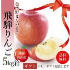 サンふじ りんご 5kg 箱 18〜20玉 秀品 贈答用 送料無料 美空野 飛騨 高山 果物 フルーツ 生 リンゴ お歳暮