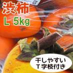 渋柿干し柿用 飛騨産 富士柿 2Lサイズ  10kg  ふじ柿 岐阜県・ふるさと名物商品
