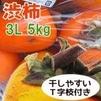 柿子 - 渋柿干し柿用 飛騨産 富士柿 3Lサイズ  5kg 約13個 ふじ柿 岐阜県・ふるさと名物商品