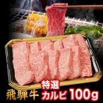 飛騨牛 A5 A4 ランク 牛肉 和牛 国産 焼き肉用 ギフト 焼肉用 牛 特選カルビ 100g 就職祝 入学祝 プレゼント