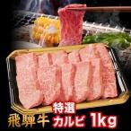 バーベキュー焼肉セット  国産高級霜降り黒毛和牛肉 A5、A4ランク限定飛騨牛焼肉 特選カルビ 6人前〜7人前(1kg)  岐阜県肉・ふるさと商品特上
