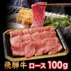 飛騨牛 A5 A4 ランク 牛肉 和牛 国産 焼き肉用 ギフト 焼肉用 牛 ロース 100g 就職祝 入学祝 プレゼント