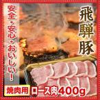 バーベキュー焼肉セット   飛騨豚ロース 焼肉 しゃぶしゃぶ とんかつ 2人前〜3人前(400g)●国産高級ブタ肉(ポーク)