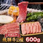 バーベキュー焼肉セット  国産高級霜降り黒毛和牛肉 送料込みA5、A4ランク限定飛騨牛焼肉用600g(特選カルビ・カルビ各300g)4人前